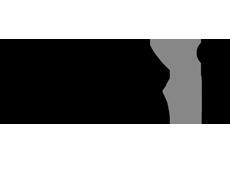 03 logo amis