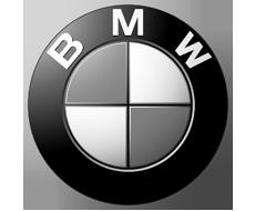 08 logo bmw